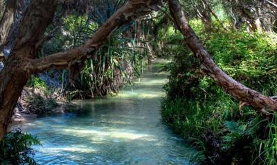 Good Times -- Sacred Waters.jpg