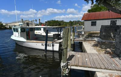 commercial fishing docks and Shelly's Seafood and Fish Market