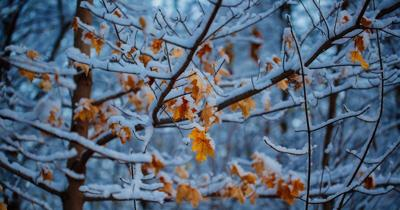Snowfall expected in higher elevations