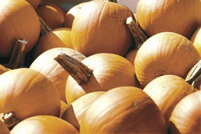 City considers allowing fall pumpkin patch in Peavine Alley downtown
