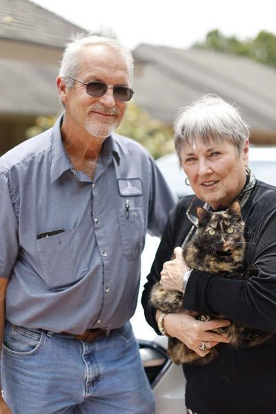 Good Samaritan helps Shelton rescue cat from car engine