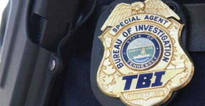 Former Bean Station police chief pleads guilty to theft