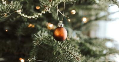 ALPS  looking for Festival of Trees  donations