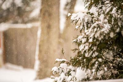 Snow predicted for East Tennessee mountains