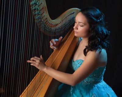 Harpist to play fundraiser at the Rose Center