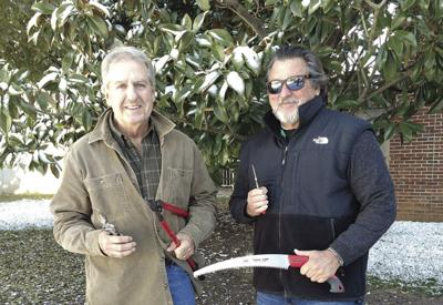 Tree board to host pruning seminar