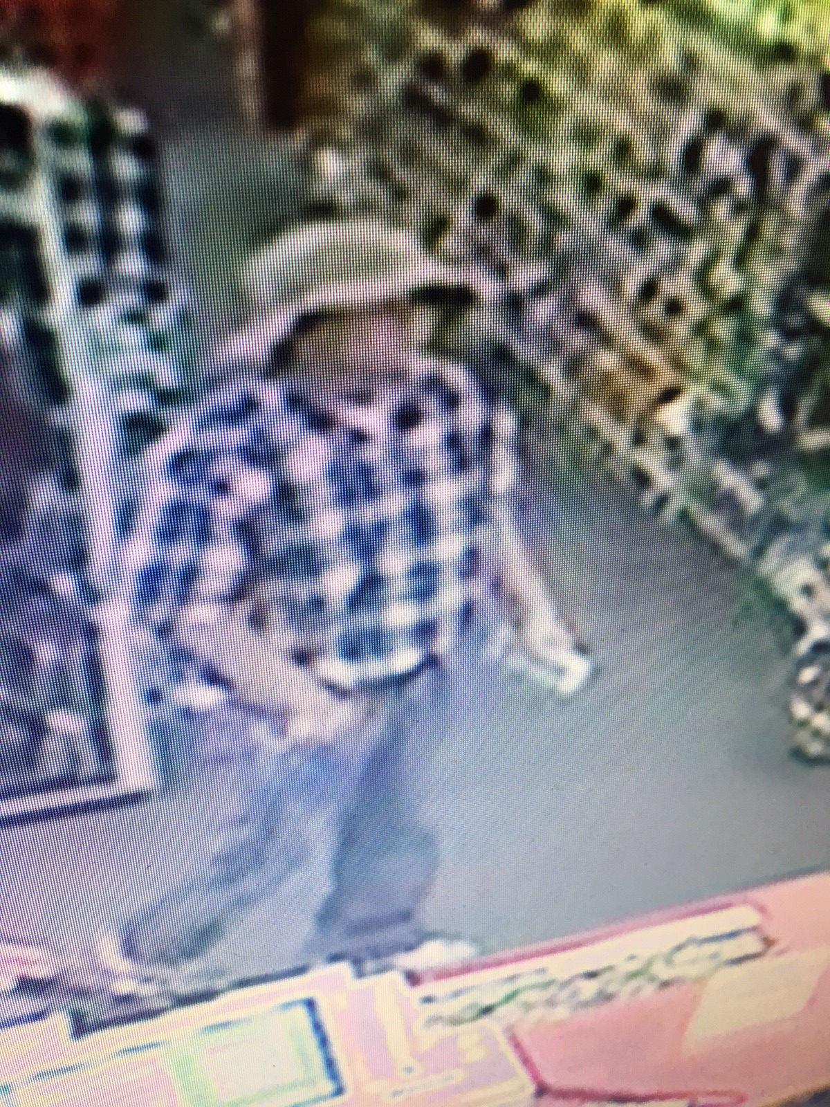mpd searching for suspect in cvs robbery local news