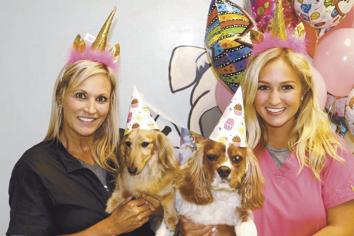 Uptown  Hound: Pet Spa celebrating 9th anniversary