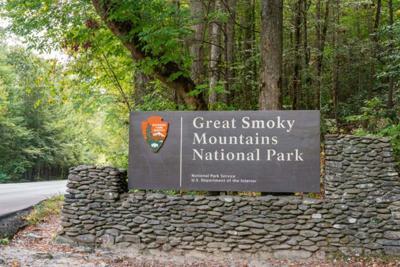 Hiker whose remains were eaten by bear identified
