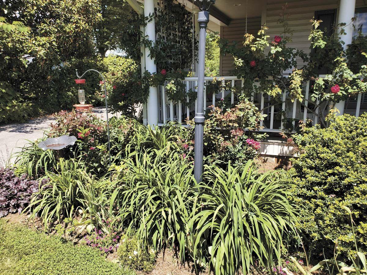 gardener 2.jpg