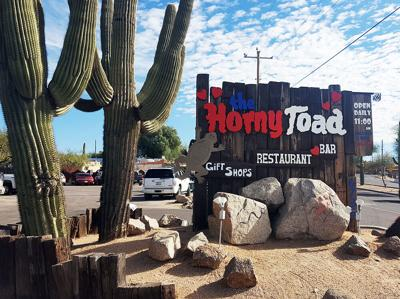 Horny Toad Sign