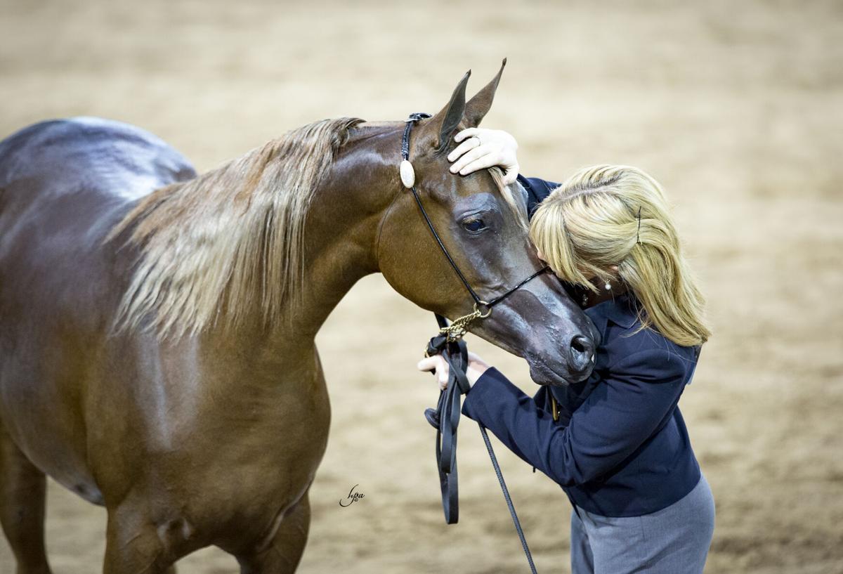 Arabian National Breeder Finals_996A7093.jpg