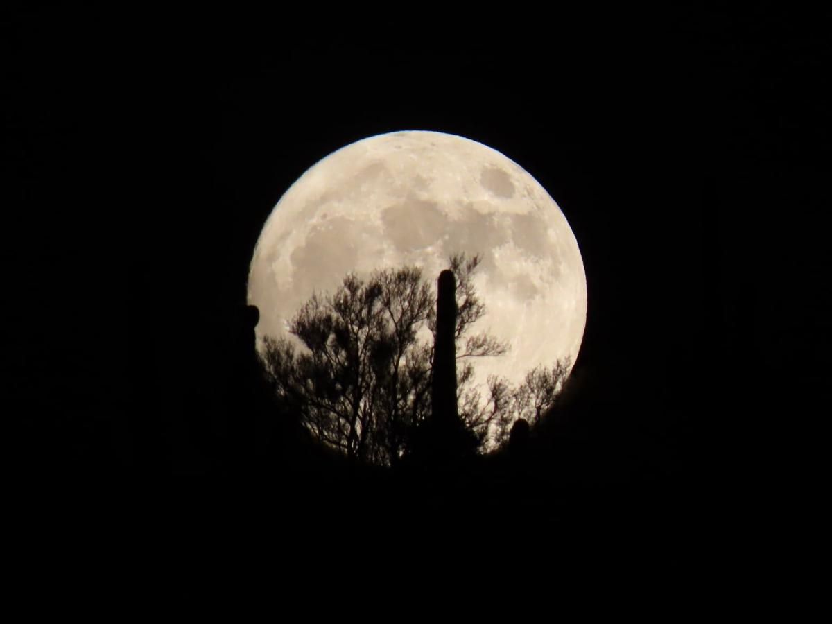Full moon at Spur Cross Ranch Conservation Area