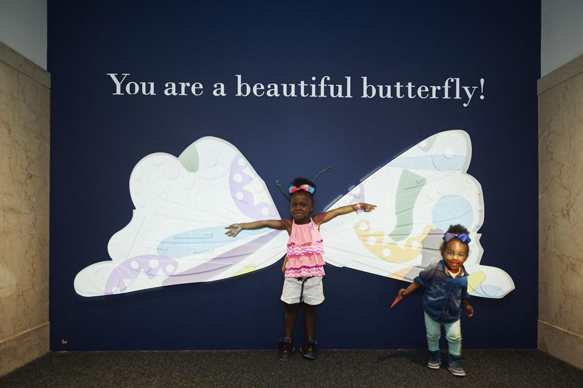 Very Eric Carle: A Very Hungry, Quiet, Lonely, Clumsy, Busy Exhibit