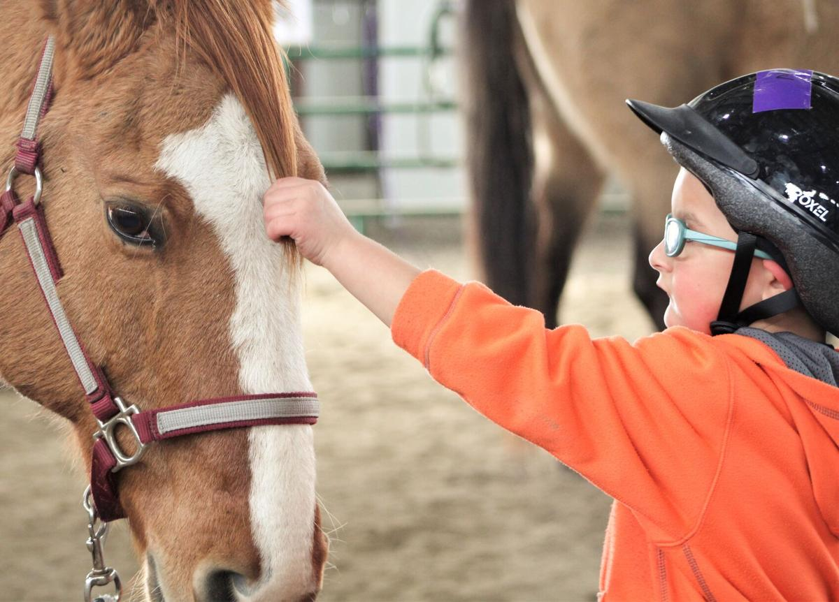 Hippotherapy photo 1