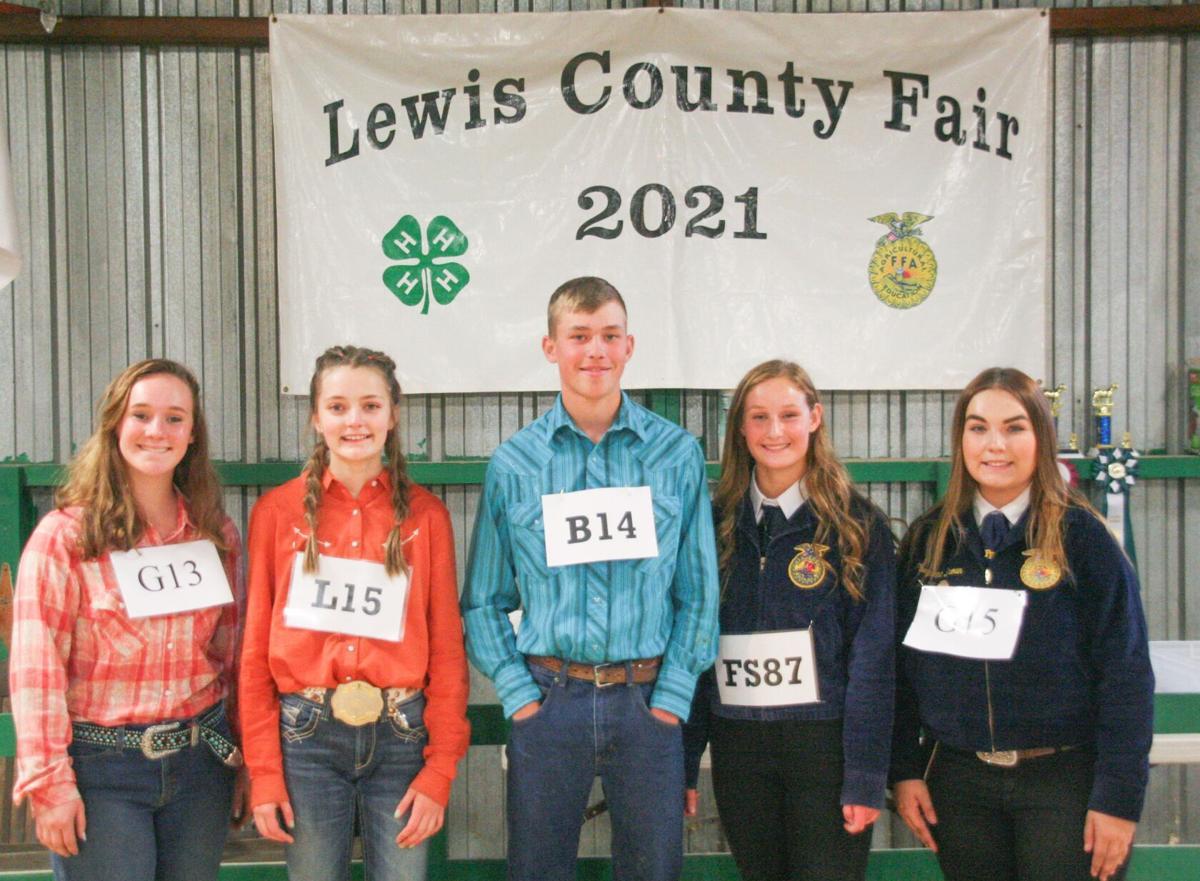 Lewis County Fair 2021 photo 3