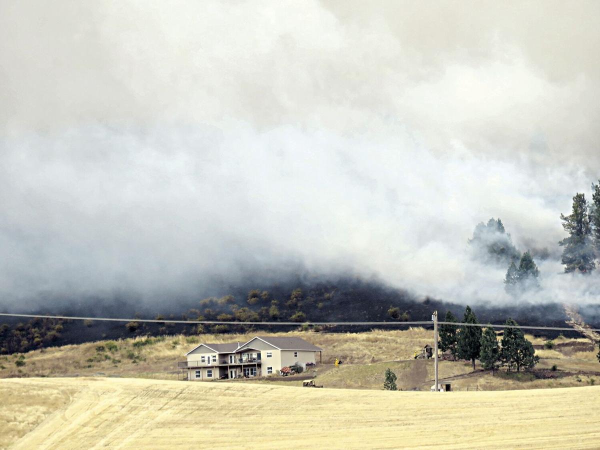 Collage--Clover Fire Start Le Ann Wilson II 09-16-20
