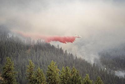 Canada Hill Fire-Shelby White