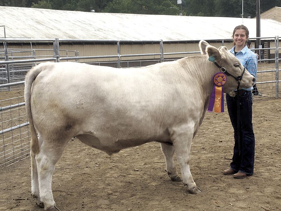 4-H Grand Champion Beef Showman Ella Beardin