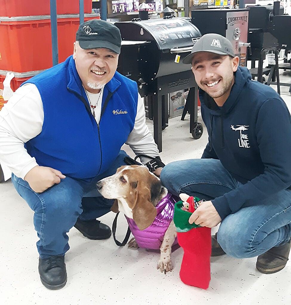 OBS Dog stocking winner 2