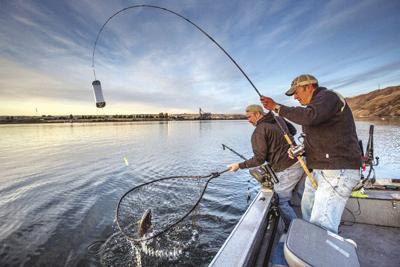 Fall chinook fishing