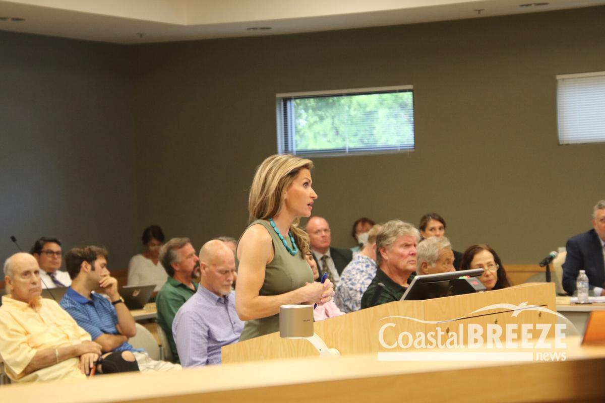 A Full Day for City Council 2- Alexis Crespo of Waldrop.JPG