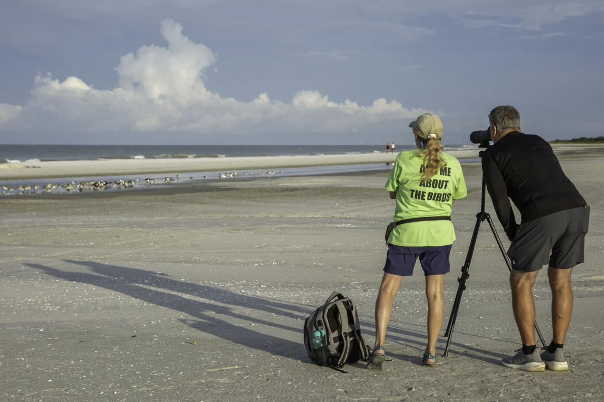 Sea Turtle 6. Ask Me About the Birds - Shorebird Steward Lin Taylor with a beachgoer checking out the birds.jpg