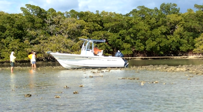 Boater's 1. Backwater edition photo.png