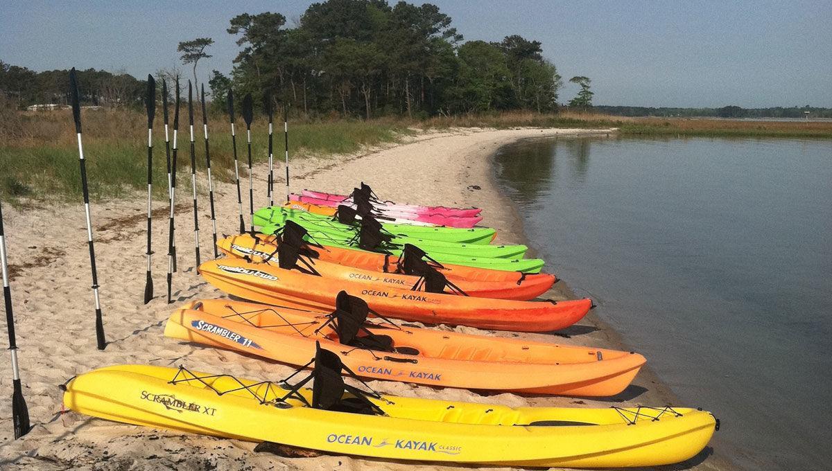 Ecobay Kayak Adventures