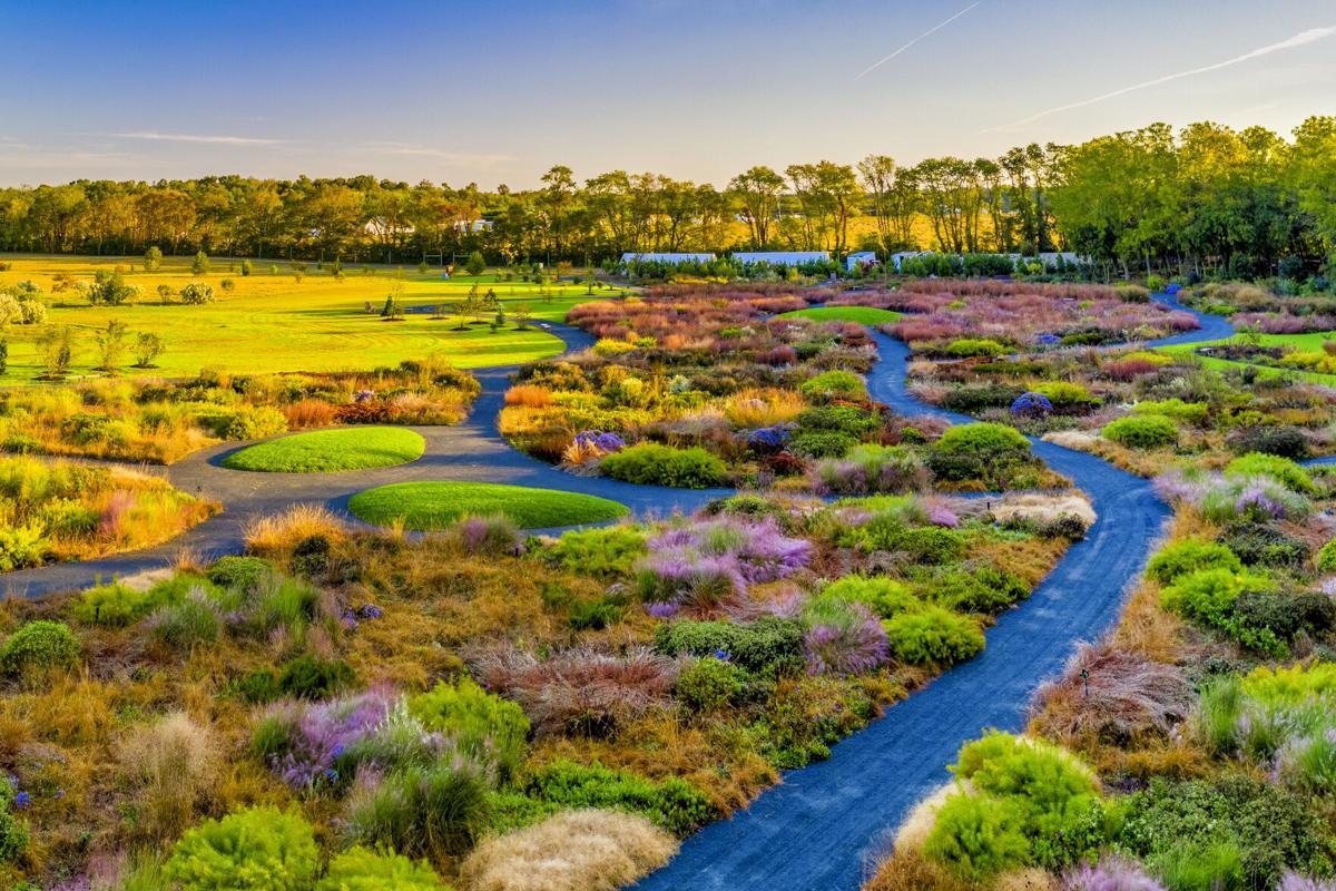 Delaware Botanic Gardens fall color