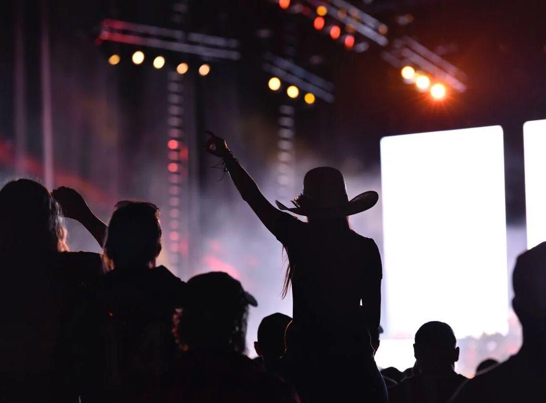 Delaware State Fair concert (copy)
