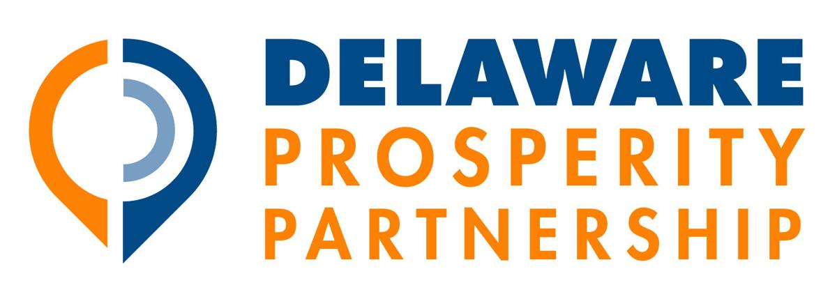 DPP-Logo_1600x572.jpg