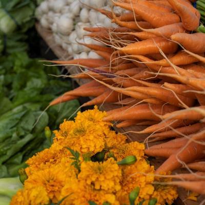 Carrots from Fox Briar Farm HLFM (copy) (copy)