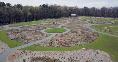 Delaware Botanic Gardens - spring gardens