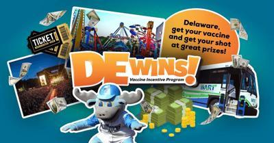 DE Wins! collage