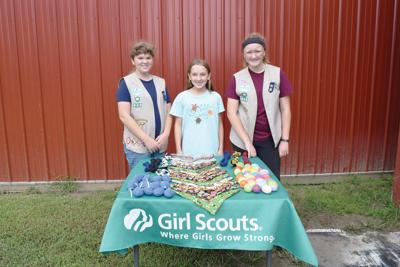 Local Girl Scouts create pet items for Humane Society fundraising effort (copy)
