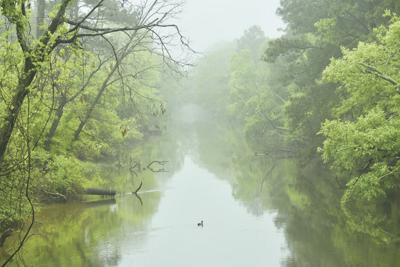 Assawoman Canal Trail