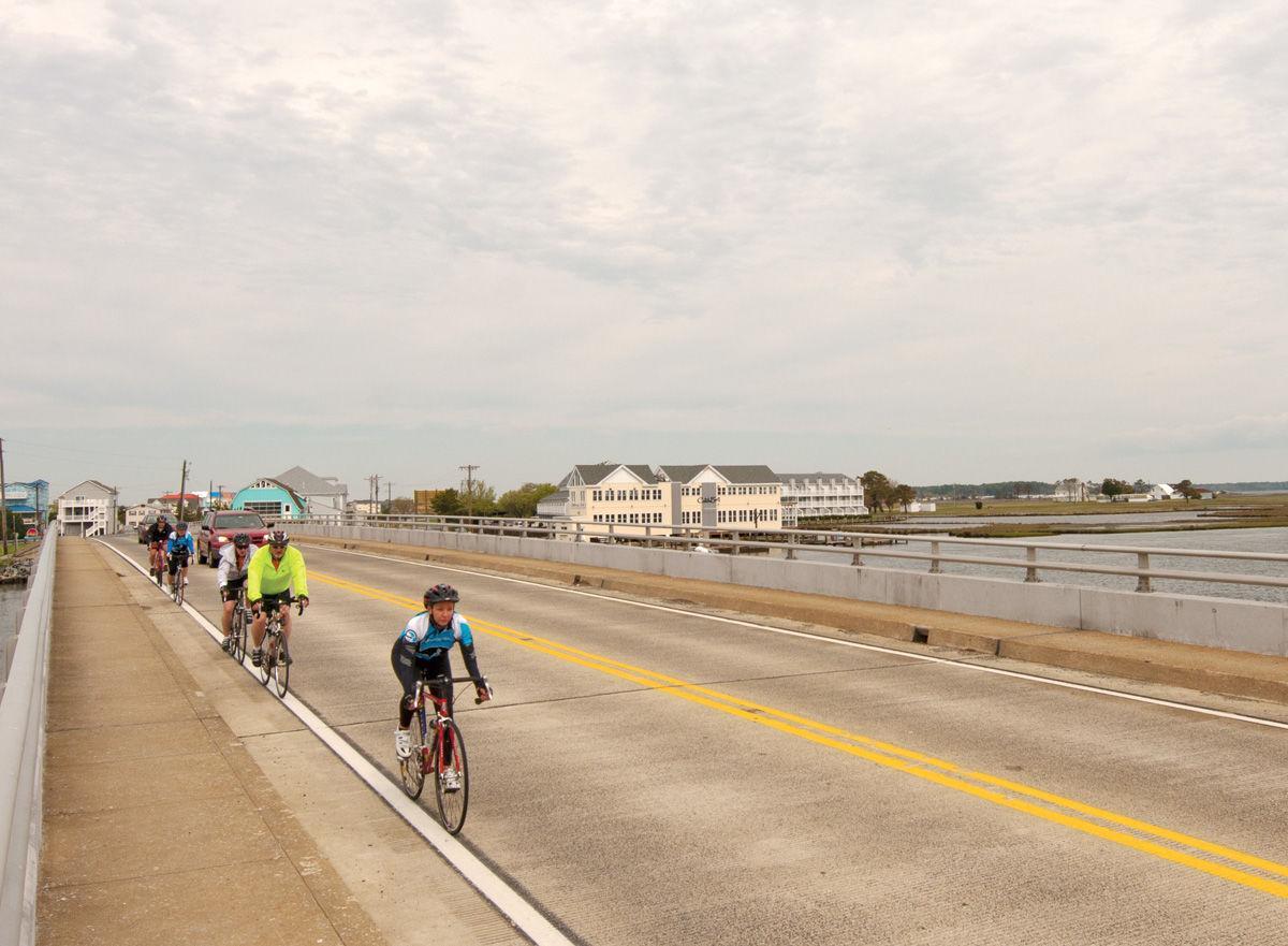 Ocean to Bay Bike Tour