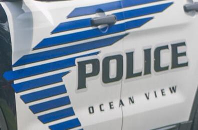 Ocean View Police Department cruiser