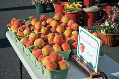 Bethany Beach Farmer's Market (copy)