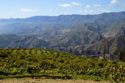 Carpinteria Valley groundwater basin