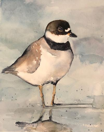 """""""Plover"""" by Janey Cohen."""