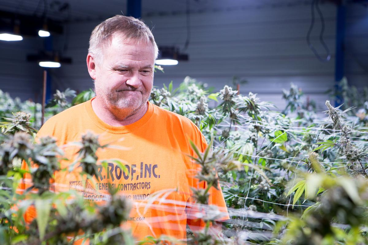 Coastal Growers owner Marty Junge routinely produces some of the most potent pot in Washington