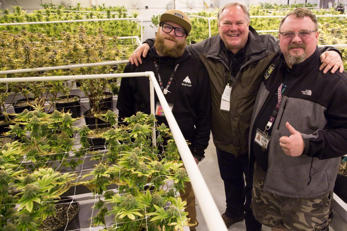 Q&A: Mr. Doobees owner H.J. Norris is a marijuana believer now