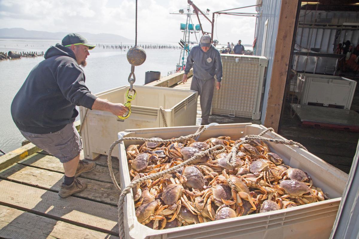 From fishermen to your front door