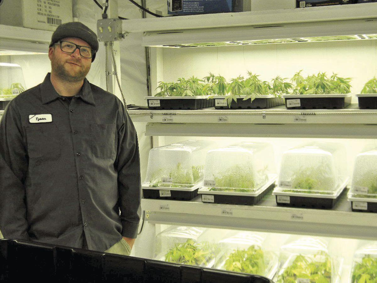 Quality Growers LLC preparing for first marijuana crop