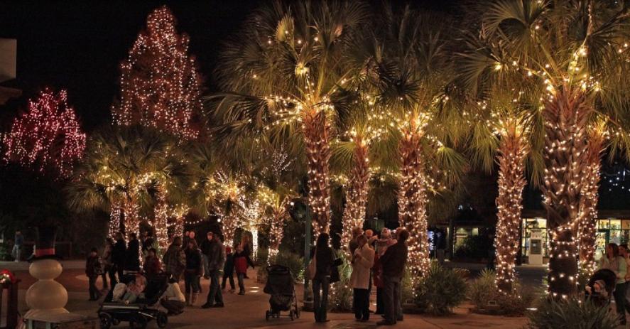 Lights Before Christmas Riverbanks Zoo 2020 Riverbanks Zoo & Garden's Lights Before Christmas nominated for