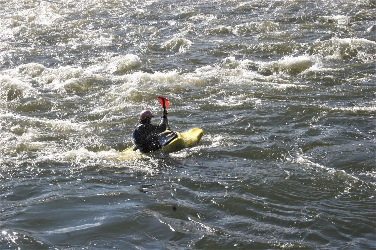 Kayaks (1).JPG