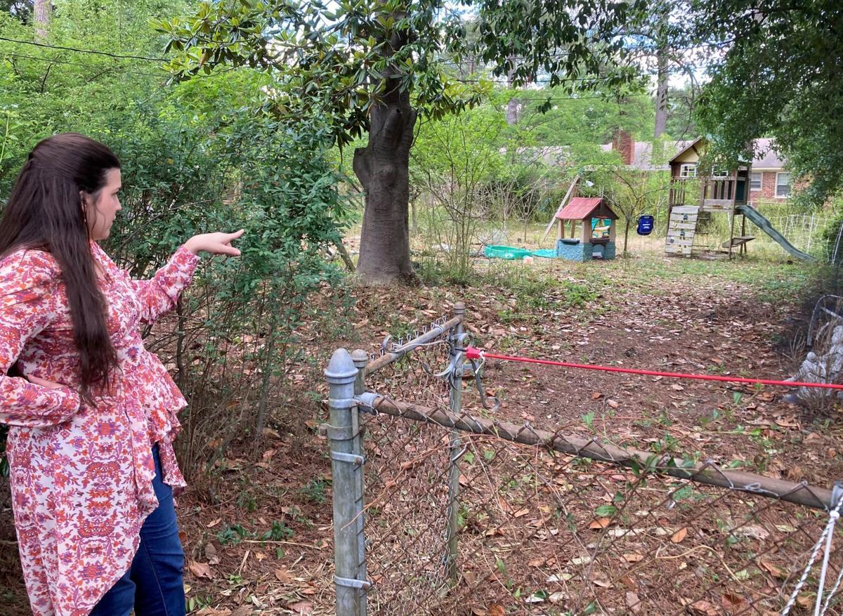 Backyard of Clary home.JPG