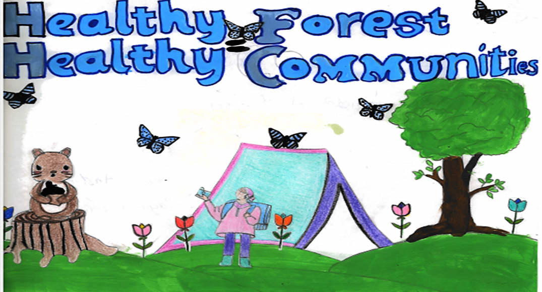 Poster by Amiya Anderson, Bethel-Hanberry Elementary School.png